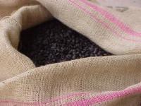 Kona Coffee Beans Hawaii