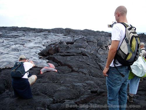 Hawaii Volcanoes National Park Surface Lava