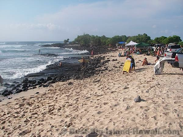 Best Big Island Beaches - Pine Trees