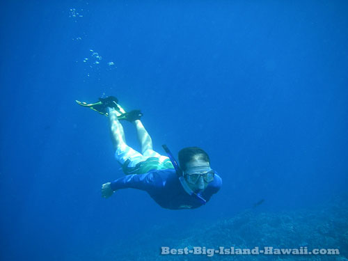 Big Island Snorkeling Hawaii