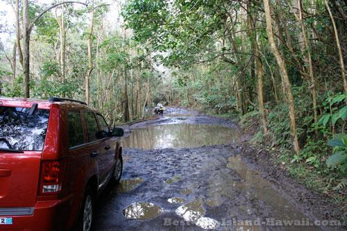 Waipio Valley Hawaii Mud